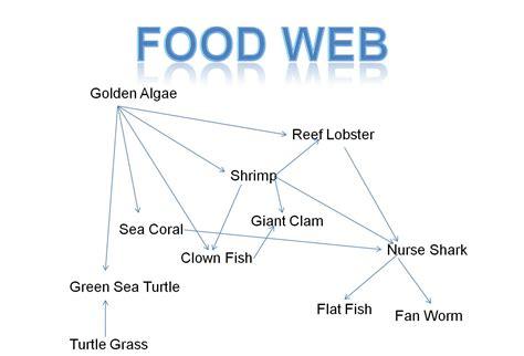web cuisine land food web imgkid com the image kid has it