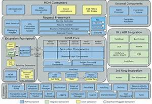 Infosphere Mdm Components