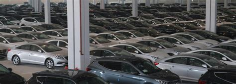 Car Importers In Iran Have A Field Day  Financial Tribune