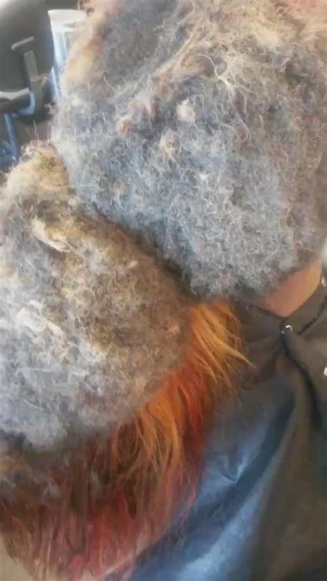 leave  weave