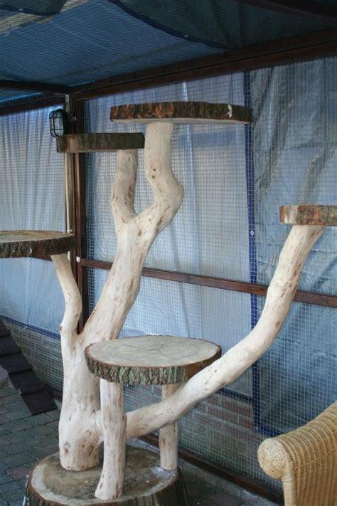 idea  making  outdoor cat tree cat crazy outdoor