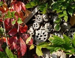 Schmetterlinge überwintern Helfen : insektenhotel den standort richtig w hlen ~ Frokenaadalensverden.com Haus und Dekorationen