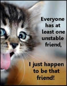 Image result for cats with quotes