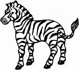 Zebra Coloring Pages Animals Printable Young sketch template