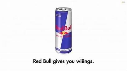 Bull Advertising Slogans Story Tagline Wings Redbull
