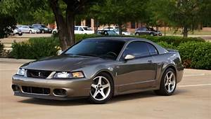 Ford Mustang SVT Cobra Questions - 99 mustang svt cobra m5. What's the m5 stand for. I'm liking ...