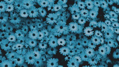 wallpaper aesthetic blue hd