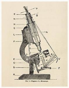 Vintage Science Diagram Of Microscope Pull By