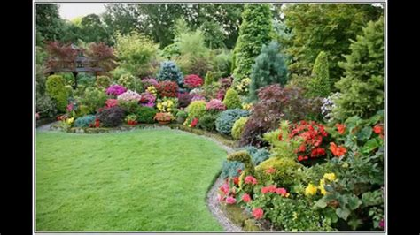 small landscape plants simple small garden shrubs youtube