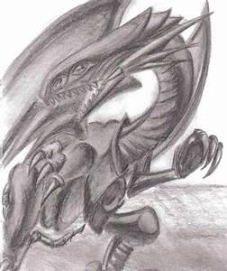Drachen Schwarz Weiß : der wei e drache mit eiskalten blick drache skizze zeichnung zeichnungen von heiwaa bei ~ Orissabook.com Haus und Dekorationen