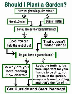 Should You Plant A Garden  Check Out The  U201cflow Chart For The Gardening Revival U201d