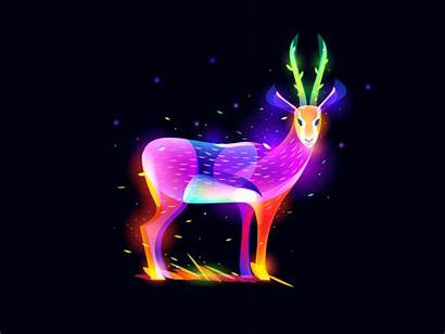 Fantasy Antelope Digital Gifs Blend Colorful Dribbble