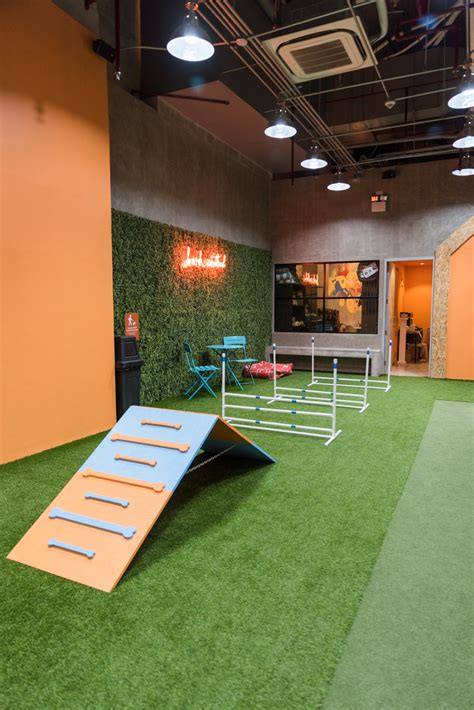dog park indoor central bark cafe agility course mini ph perfect nolisoli date