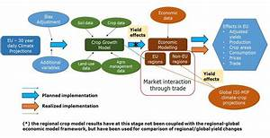 Information Flow Between Biophysical And Agro