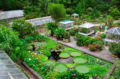 Botanischer Garten Der Universität Erlangennürnberg