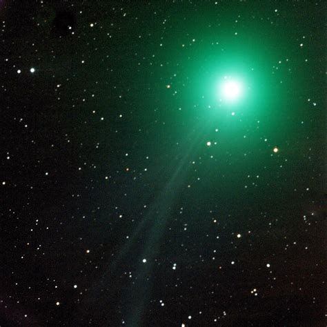 christmas comet mikes astro