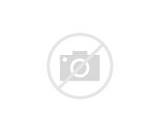 Mountain Lion coloring page