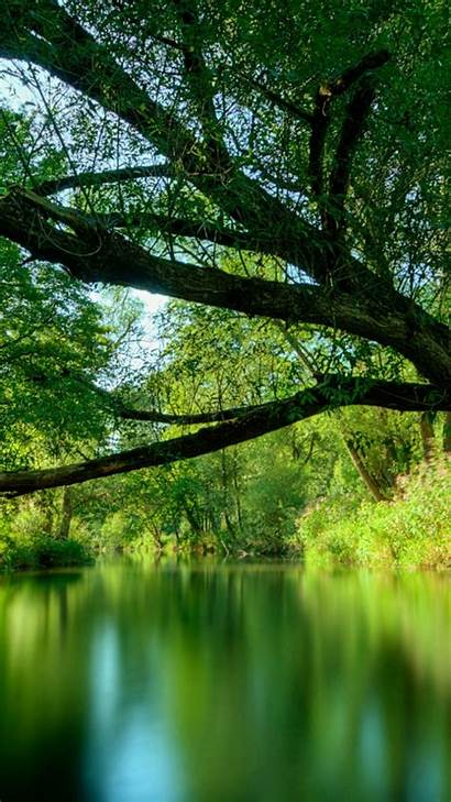 Iphone Nature Water Reflection Resolution Mobile Rainforest
