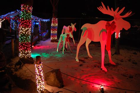stoneham zoo holiday lights where to see the best lights around boston the artery