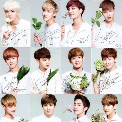 exo kpop exo official limited photo card exo k exo m nature