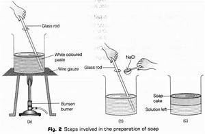 Cbse Class 10 Science Lab Manual