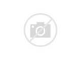 Custom Parts Toyota Tacoma Pictures