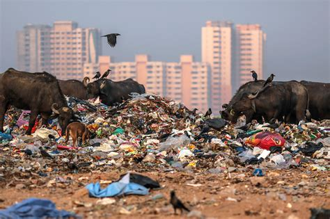 mumbai   buried   mountain    trash