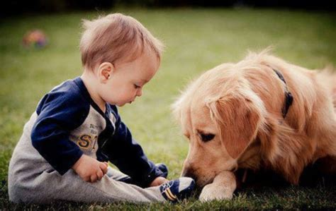 5 Things Pets And Kids Have In Common