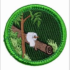 258 Best Merit Badges Images On Pinterest  Badges, Merit Badge And Badge