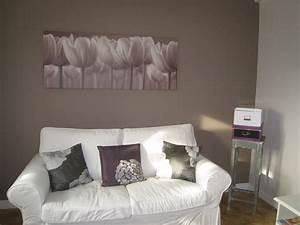 salon (photo 6/6) - mur taupe vers le canapé les