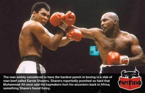 earnie shavers punch king boxing fact fiend