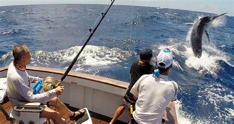 Australian Sport Fishing Boats by Marlin Fishing Cairns Australia Australian Marlin Charters