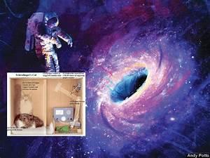 Qué pasa con el experimento del gato de Schrödinger dentro ...