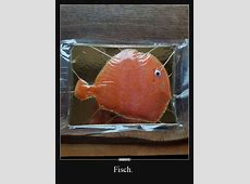 Fisch DEBESTEde, Lustige Bilder, lustig foto