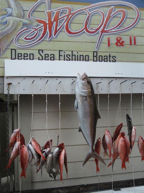 deep sea fishing  swoop charters  destin fl