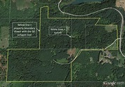 Mapping your forest with Google Earth and a GPS phone app ...