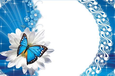 moldura  fotos borboleta  flores
