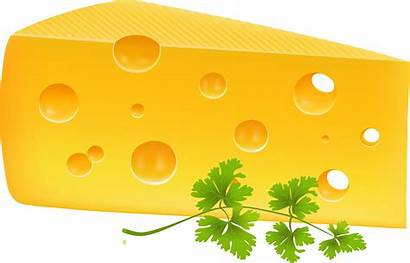Cheese Clipart Transparent Wheel Clip Drawing Clipground