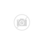 Hair is the first thing and teeth the second. Hair and teeth, a man ...