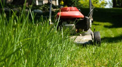 rid  ticks   yard  simple steps