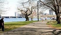Running on Boston's Battle Road Trail