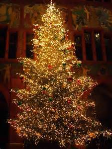 Image result for xmas trees