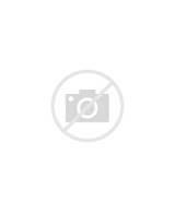 Lemur coloring page