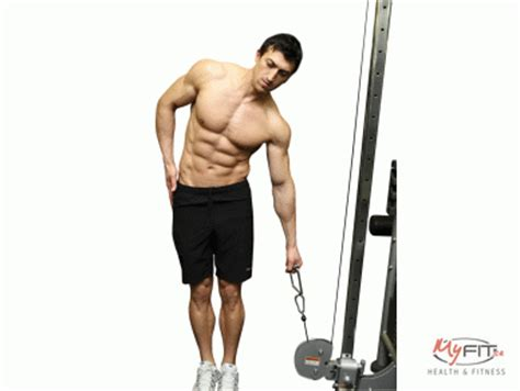 cable crunches exercise myfit
