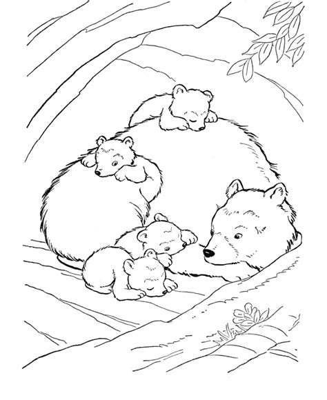 brown bear coloring page bears unit study    row  celebrated dancing bear