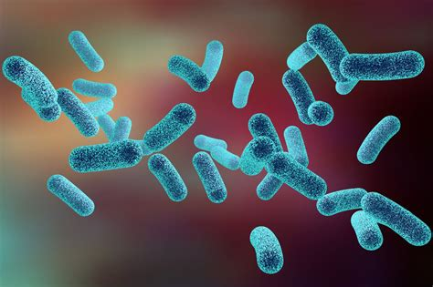 clostridium difficile infection  rare  costlydeadly