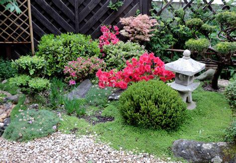 jardin japonais le nouveau de shuki