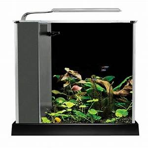 Petit Aquarium Design : fluval spec iii aquarium 2 6 gallon black desktop glass ~ Melissatoandfro.com Idées de Décoration