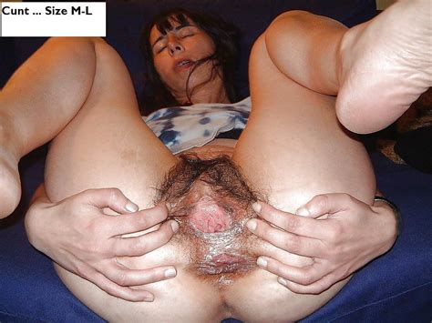 Cunt Or Pussy Big Small Or Average 29 Pics Xhamster