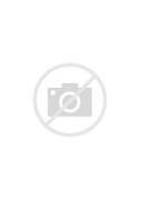 Pin Jolly Joker 2 on P...